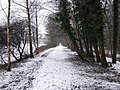Oakamoor to Denstone Greenway in the Snow - geograph.org.uk - 413511.jpg