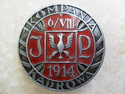 First Cadre Company Badge