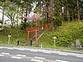 Omoto, Iwaizumi, Shimohei District, Iwate Prefecture 027-0421, Japan - panoramio (3).jpg