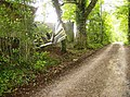 On the bridleway from Combley Farm to Guildford Farm - geograph.org.uk - 469607.jpg