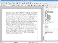 OpenOffice.org-2.3.1-Writer.png