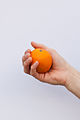 Orange held in hand.jpg