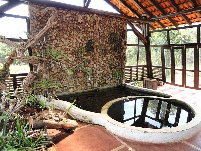 Nursery Margaret Mee  Jardim Botânico de Brasília  DSC09739JPG