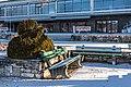 Pörtschach am Wörther See Johannes-Brahms-Promenade Blumenstrand Buchsbaumfigur 21012018 2338.jpg