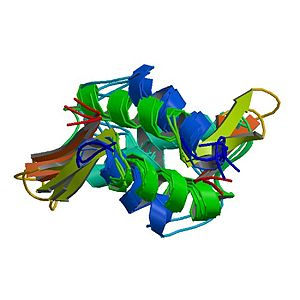 Histone - PDB rendering of HIST1H1B based on 1ghc.
