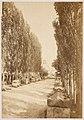 PM 109895 Souvenir de Voyage 1901.jpg