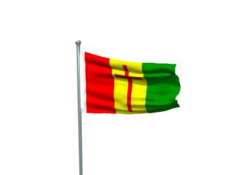 Pakistan Christian Congress - Image: Pakistan Christian Congress Flag 1
