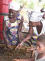 Palm oil production in Jukwa Village, Ghana-11.jpg
