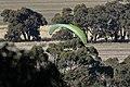 Paraglider (33998175234).jpg