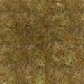 Parallax grass.png