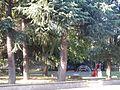 Parco Patellani Cesano Boscone (28).jpg