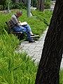 Park Scene with Man Reading - Taipei - Taiwan (40895993843).jpg