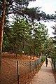 Parque Biológico de Vinhais - Portugal (26012449835).jpg
