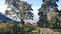 Parque Nacional El Avila (Warairarepano) National Park, Caracas y Vargas Venezuela 1.jpg