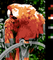 Parrot NES with dithering.png
