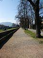 Passeggiata delle mura, Lucca.JPG