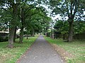 Path off A689 - geograph.org.uk - 215233.jpg