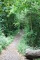 Path to Vanderbyl Avenue.jpg