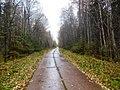 Permskiy r-n, Permskiy kray, Russia - panoramio (743).jpg