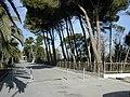 Pescara Lungomare e Pineta Nord0001.JPG