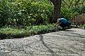 Pflanzenfotografie im Erholungspark Marzahn.JPG
