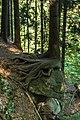 Piechowice, Poland - panoramio (4).jpg