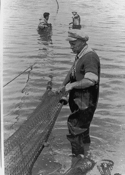דייג בבריכות הדגים