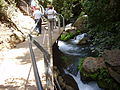 PikiWiki Israel 14678 Suspended Trail at Banias river.JPG