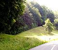 Pitschgau Bischofegg Gelände der Turmburg2.jpg