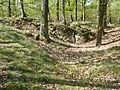Podyjí, mezi Popicemi a Sealsfieldovým kámenem (4).JPG