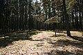 Pole namiotowe, jezioro Głęboczek - panoramio (13).jpg