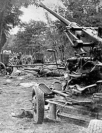 Polish Bofors 40 mm antiaircraft gun and a bombed Polish Army column during the Battle of the Bzura.