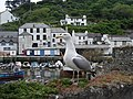 Polperro - harbour and seagull - geograph.org.uk - 1189530.jpg