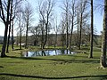 Pond at Baronscourt - geograph.org.uk - 384082.jpg