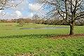 Pond feeding River Itchen at Cheriton - geograph.org.uk - 356809.jpg