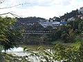 Ponte Marechal Floreano Peixoto - panoramio (1).jpg