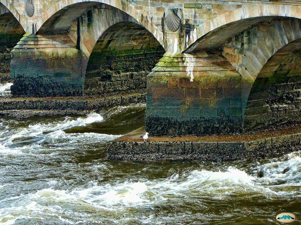 Pontevedra, Galiza. Ponte do Burgo