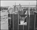 Poston, Arizona. Barracks under construction at this War Relocation Authority center where evacuees . . . - NARA - 536298.tif
