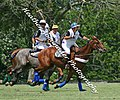 Practice Polo at the Kentucky Horsepark (2667750978).jpg