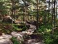 Preikestolen Trail - 2013.08 - panoramio.jpg