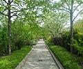 Promenade Plantée (5986785427).jpg