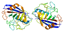Protein NKTR PDB 2he9.png