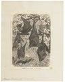Pteropus edwardsii - 1700-1880 - Print - Iconographia Zoologica - Special Collections University of Amsterdam - UBA01 IZ20700013.tif