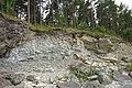 Pulli pank Saaremaal.jpg