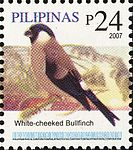 Pyrrhula leucogenis 2007 stamp of the Philippines.jpg