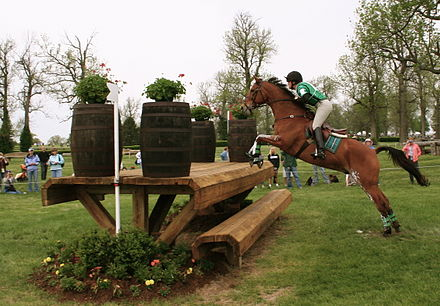 A horse just taking off from the ground to jump a wooden jump. The horse's back legs are still on the ground but its two front legs are stretched forward and upward to reach over the jump. The rider is flat against the horse's neck.
