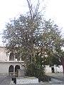 Radha krishana Temple Shanichara Morena MP India - panoramio - Gyanendrasinghchauha… (3).jpg