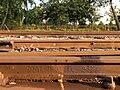 Rail DOWLAIS STEEL 1893.jpg
