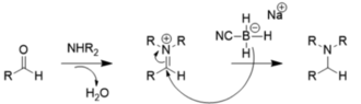 Carbonyl reduction - The carbonyl and amine undergo dehydration to form an iminium ion intermediate, which then undergoes reductive amination to form the amine.