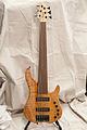 Regenerate Malibu series 6 string fretless bass.jpg